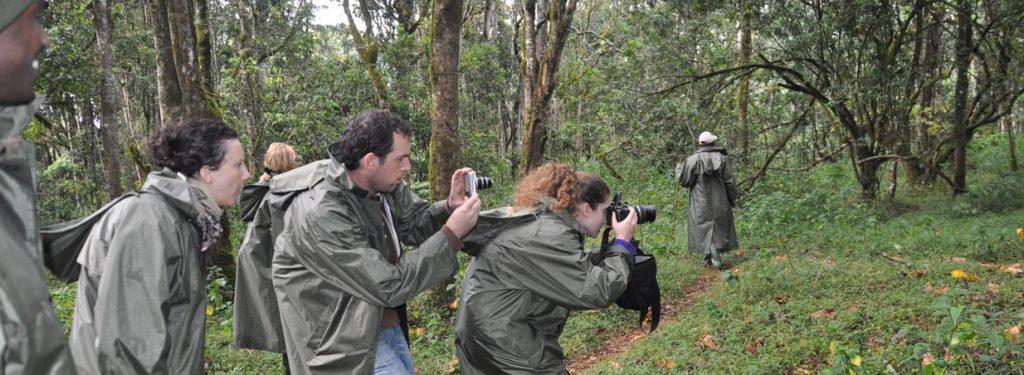 Climbing Mount kenya