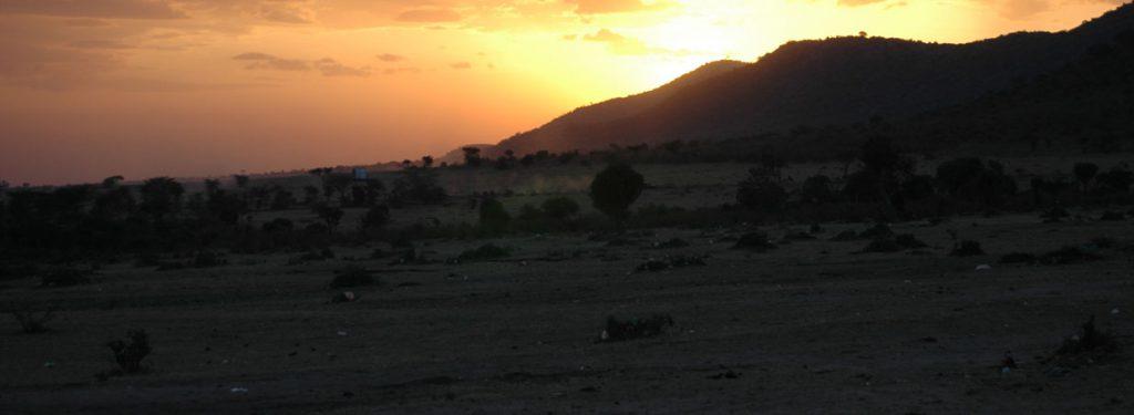 safari Serengeti Wild cats