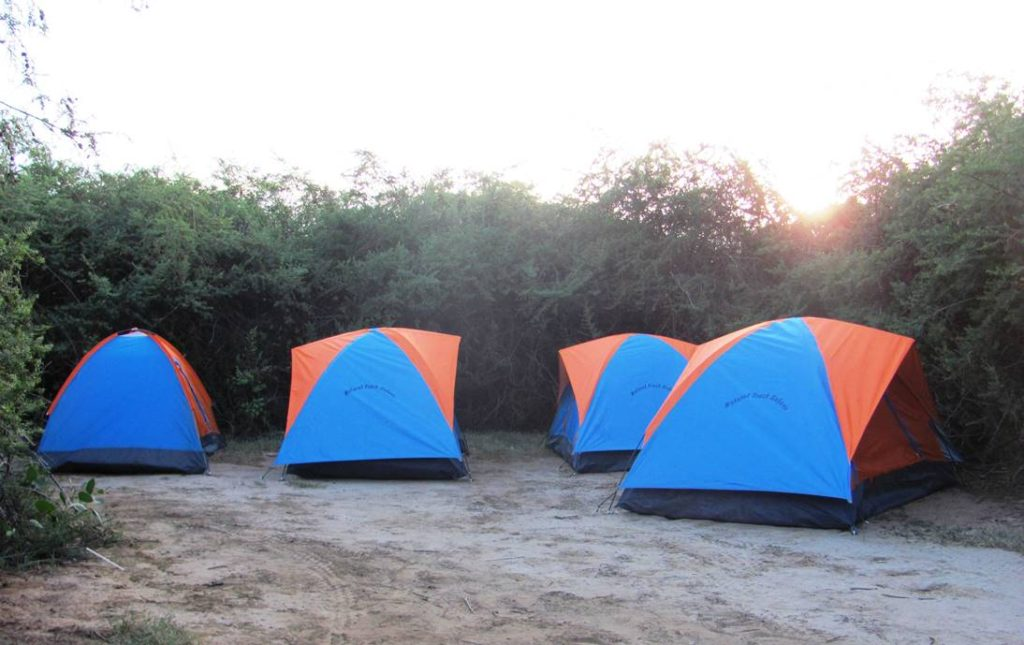 camping tents, Kenya safari lodges